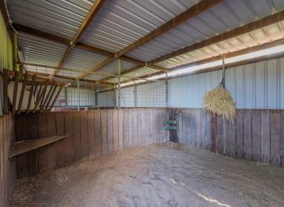 Large Family Home Looking for a New Family - Horses Welcome!