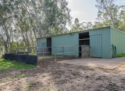Equestrian Property with Schools, Shops & Transport Nearby!