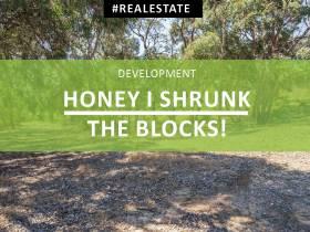 Honey I Shrunk the Blocks!