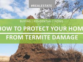 How to Protect Your Home from Termite Damage