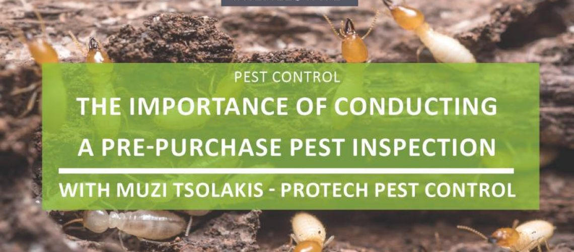 The importance of conducting a pest inspection before purchasing a property